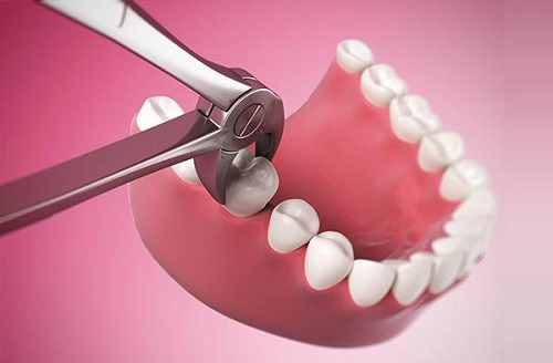 Theo chuyên gia, để có hàm răng chắc khỏe,chỉ làm sạch răng lợi bên ngoài là chưa đủ, cần phải nuôi dưỡng, tái tạo răng lợi từ bên trong hàng ngày.