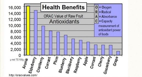 Lợi ích sức khỏe của quả Aronia (cột màu vàng).