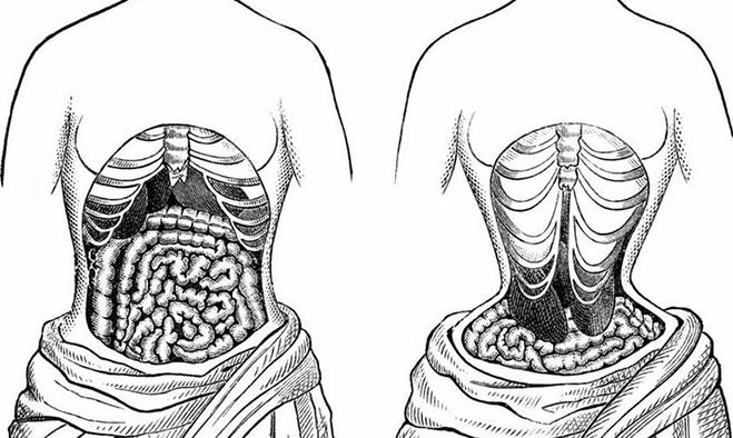 Hình ảnh cơ quan trong cơ thể biến đổi do dùng nịt bụng. Ảnh: Pulse
