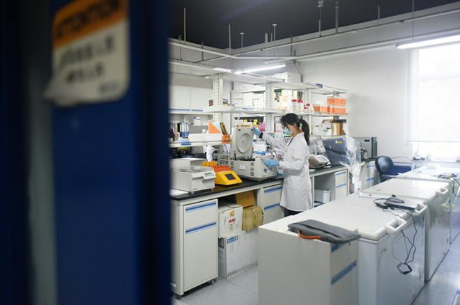 Nhóm nghiên cứu đã làm việc ngày lẫn đêm để tìm ra loại thuốc ngăn chặn đại dịch. Ảnh: AFP