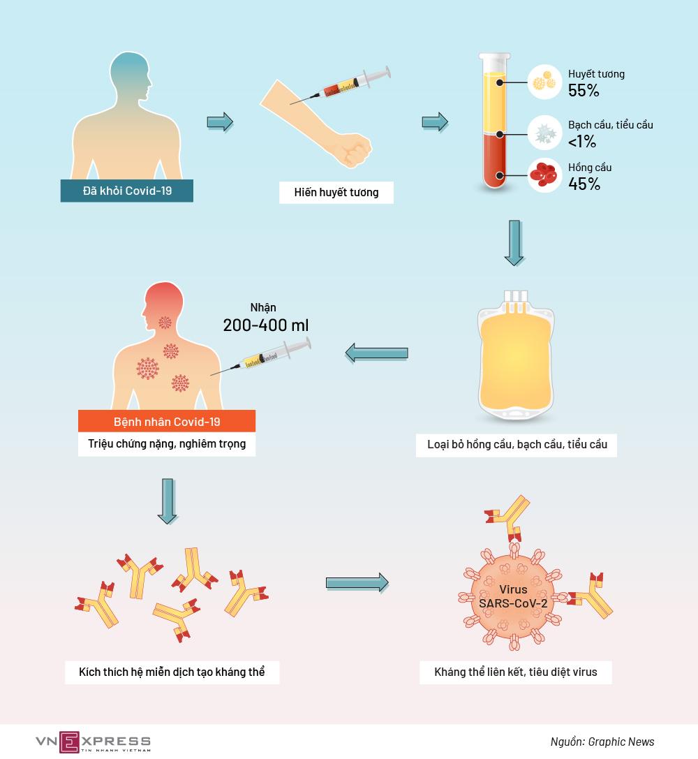 Liệu pháp huyết tương tiêu diệt nCoV như thế nào?