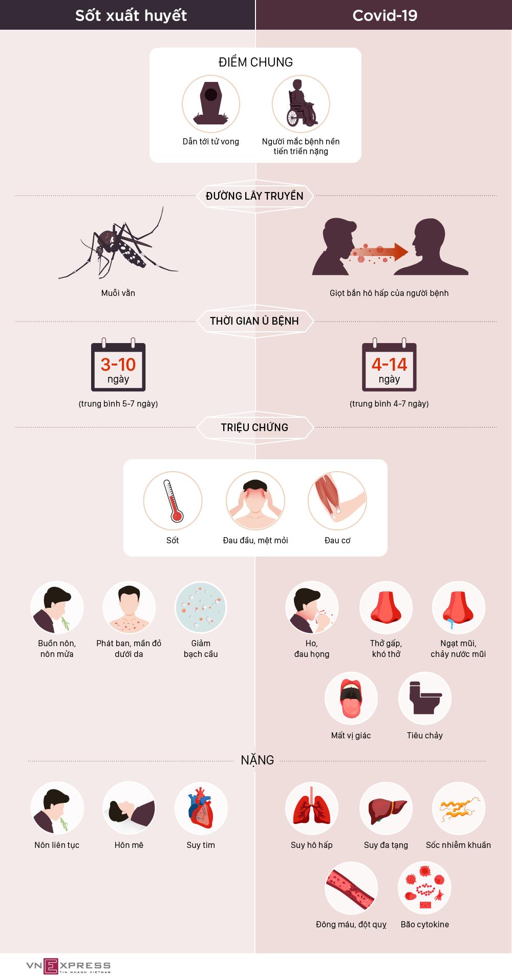 Phân biệt triệu chứng Covid-19 và sốt xuất huyết