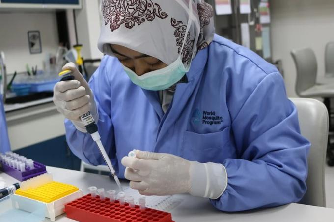 Chuyên viên làm việc tại phòng thí nghiệm của WMP. Ảnh: SCMP