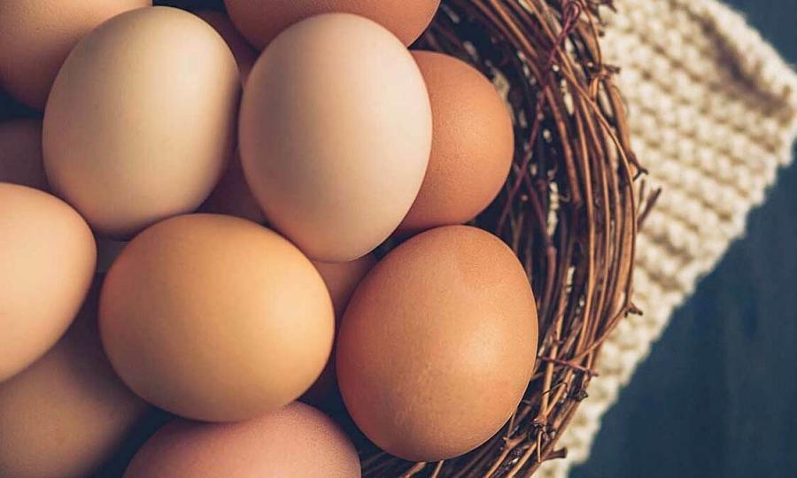 Ăn trứng không làm tăng mỡ máu