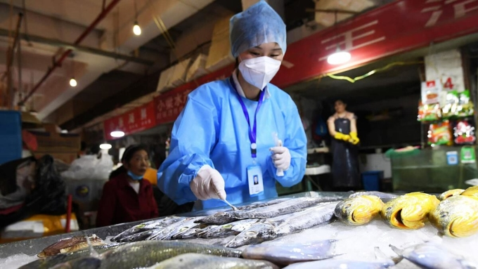 Nhân viên y tế xét nghiệm nCoV cho các sản phẩm cá đông lạnh nhập khẩu vào Bắc Kinh. Ảnh: Xinhua