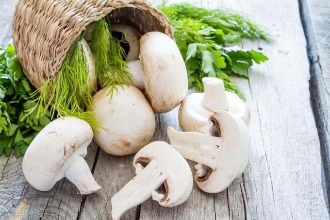 Có rất nhiều loại nấm như: nấm hương, nấm portobello và nấm mỡ (nấm trắng, tên khoa học là Agaricus bisporus). Runner có thể nấu hoặc ăn sống. Ảnh: Gardenmanage.